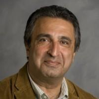 Ali Amini