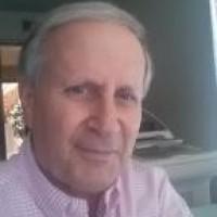 Dennis N Fliegelman